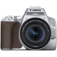 Canon EOS 250D stříbrný + 18-55mm IS STM - Digitální fotoaparát