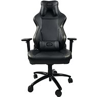 Odzu Chair Grand Prix Premium Black Carbon - Herní židle