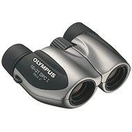Olympus DPC-I 10x21 silver