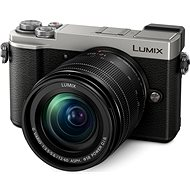 Panasonic Lumix DC-GX9 + 12-60 mm stříbrný - Digitální fotoaparát