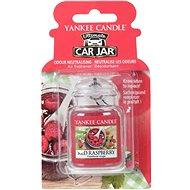 YANKEE CANDLE Red Raspberry 24 g