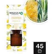 Botanica by Air Wick Svěží ananas a tuniský rozmarýn 80 ml - Vonné tyčinky