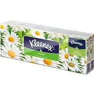 KLEENEX Family - Camomile (10×10 ks)