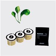 Plantui Zelí čínské Pok Choy, 3 kapsle - Kapsle