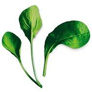 Plantui Pok Choy Red - Kapsle