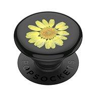 Držák na mobilní telefon PopSockets PopGrip Gen.2, Pressed Flower Yellow Daisy, žlutý kvítek zalitý v pryskyřici