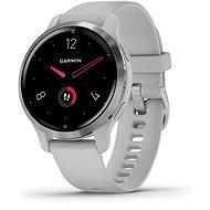 Chytré hodinky Garmin Venu 2S Silver/Gray Band