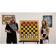 Šachové videolekce pro začátečníky - Voucher: