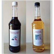 2 x 1L Farmářská ovocná vína - rybíz s rakytníkem a bezové víno - Voucher: