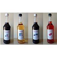 4 x 1L Farmářská ovocná vína (rybíz s rakytníkem, rybíz s arónií, bezové a jahodové víno) - Voucher: