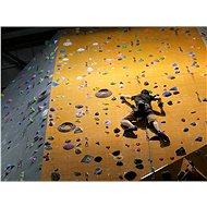 Kurz lezení na umělé stěně pro začátečníky - Praha - Voucher: