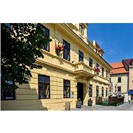 Romantická noc pro dva v hotelu Hejtmanský dvůr ve Slaném - Voucher: