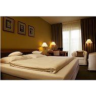 Zimní pobyt v hotelu Dolce Villa - Voucher: