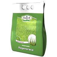 HORTUS Travní směs Regenerace - 2kg - Travní směs