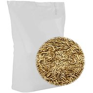 Grass seed 10 kg 315282