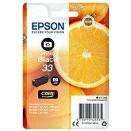 Epson T3341 foto černá - Cartridge