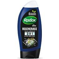 RADOX Men Fresh 2in1 Shower Gel 250 ml