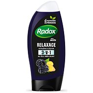 RADOX Men Feel Wild Blackberry & Ginger 2in1 Shower Gel 250 ml - Pánský sprchový gel
