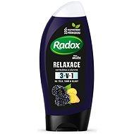 RADOX Men Feel Wild Blackberry & Ginger 2in1 Shower Gel 250 ml