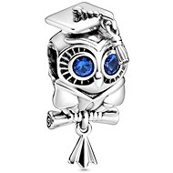 PANDORA Moments People 798907C01 (Ag925/1000, 3.4g) - Charm