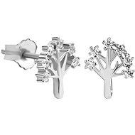 SILVER CAT SC319-051483001 (925/1000; 1g) - Earrings