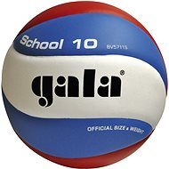 School GALA - Volleyball