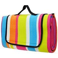 Calter Family picnic, rainbow stripes - Picnic Blanket