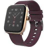 iGET FIT F20 Gold - Chytré hodinky