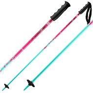 Salomon Brigade Jr Girl - Lyžařské hůlky