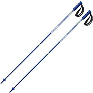 Salomon X 10 S3 Black Blue - Lyžařské hůlky
