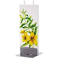 FLATYZ Yellow Jasmine 80 g - Svíčka