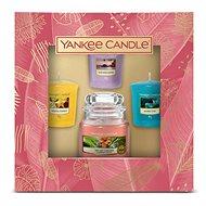 YANKEE CANDLE Classic The Last Paradise 2021, 1 ks + votiv 3 ks