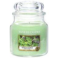 YANKEE CANDLE Classic střední 411 g Wild Mint - Svíčka