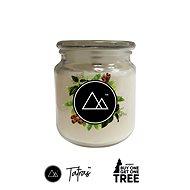 TATRAS Cinnamon 450g - Candle