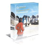 Enterprise Architect Professional Edition, Floating license (elektronická licence)