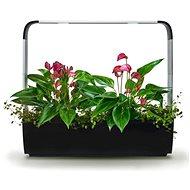 TREGREN T12 Kitchen Garden, černý - Chytrý květináč