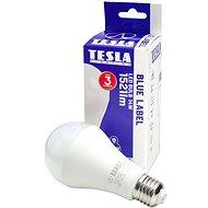 Tesla LED BULB A65 E27 14W - LED Bulb