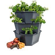 Paul Potato - A Three-Storey Potato Tower - Flowerpot