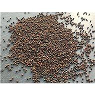 Semena TvojeFarma Červený kedluben 50g