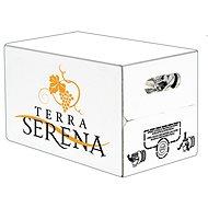 VINICOLA SERENA Bag in Box Pinot Grigio 10l Veneto IGT - Wine