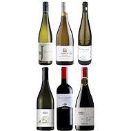 KARTON BEST OF 2020: SVĚT 6x 0,75l sada vín