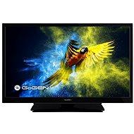 "22"" GoGEN TVF 22M302 STWEB - Televize"