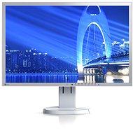 "23"" EIZO EV2316W-GY EcoView - LCD monitor"