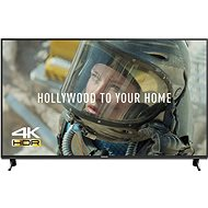 "55 ""Panasonic TX-55FX603E - Television"