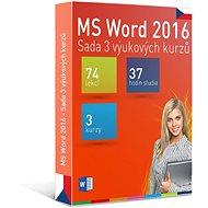 GOPAS MS Word 2016 - 3 samostudijní výukové kurzy na 365 dní CZ (elektronická licence)