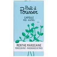 Pret a Pousser Moroccan Mint Pod