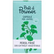 Pret a Pousser Curly Leaf Parsley Pod