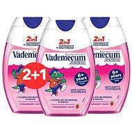 VADEMECUM 2v1 Junior Jahoda 3× 75 ml