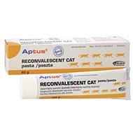 Aptus Re-convalescent Cat Pasta 60g