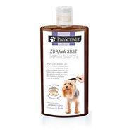 Proactivet Zdravá srst Derma šampon 250 ml - Příspěvěk pro útulek